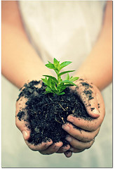 child-plant-growing